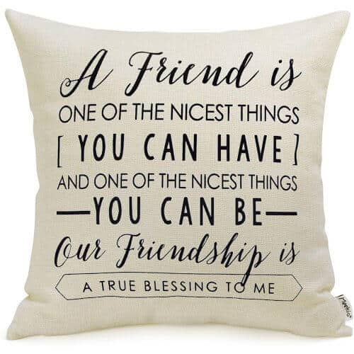 gift idea - Friendship Gifts Decorativ Pillow Covers